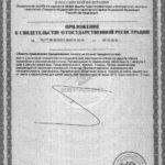 Свидетельство о государственной регистрации Detox+ Vision приложение