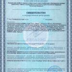 Свидетельство о государственной регистрации Биск Vision Бад