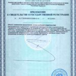 Свидетельство о государственной регистрации Мистик Визион приложение