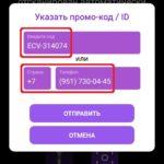 Введите код ECV-314074 → Отправить