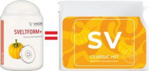 Sveltform+ = SV projectV